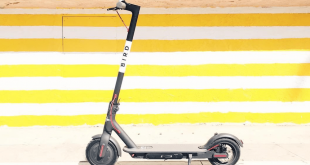 Can You Actually Make Money Charging Bird Electric Scooters?