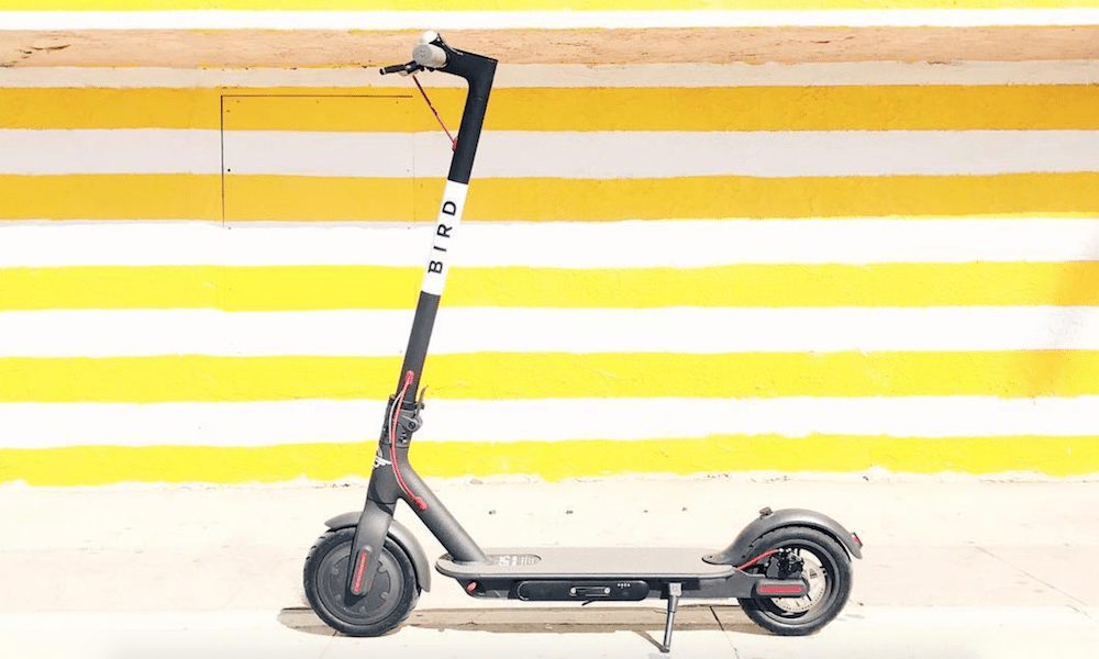Can You Actually Make Money Charging Bird Electric Scooters Wheelive
